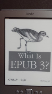Cover What is EPUB3?